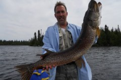 48 inch Northern, June 2011